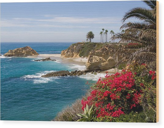 Morning Light Montage Resort Laguna Beach Wood Print