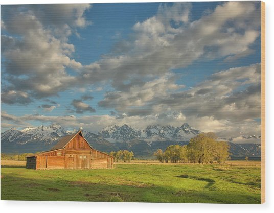 Morning Light On Moulton Barn Wood Print