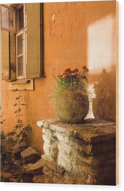 Morning Light Tuscany Wood Print