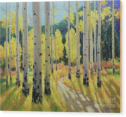 Morning Lights Of Aspen Trail Wood Print