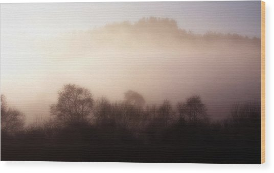 Morning Mist  Wood Print