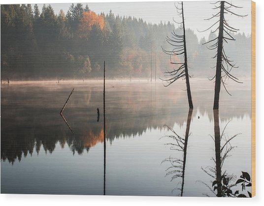 Morning Mist On A Quiet Lake Wood Print