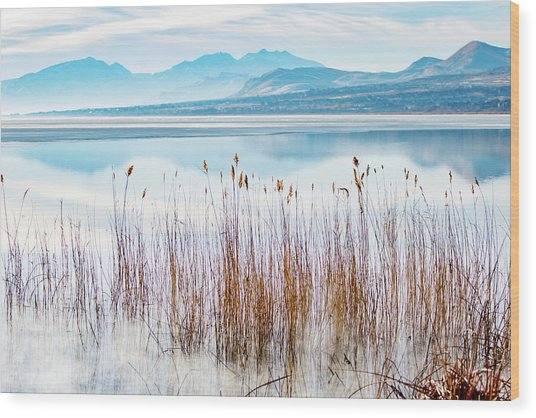 Morning Mist On The Lake Wood Print