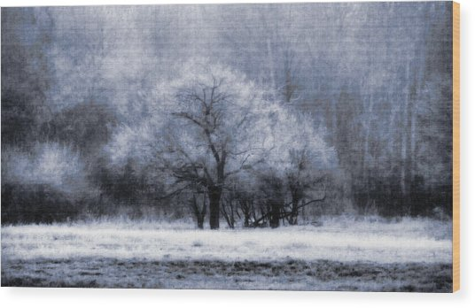 Morning Mood Wood Print