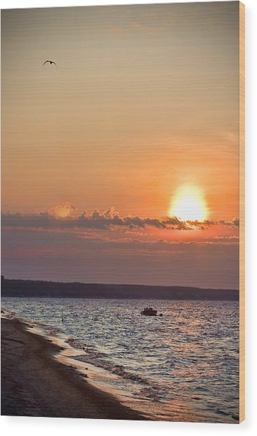 Morning On Earth Wood Print by Michel Filion