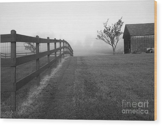 Morning On The Farm        Bw Wood Print