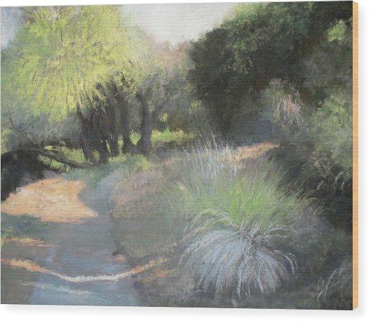 Morning Rays II Wood Print by Anita Stoll