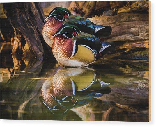 Morning Reflections - Wood Ducks Wood Print