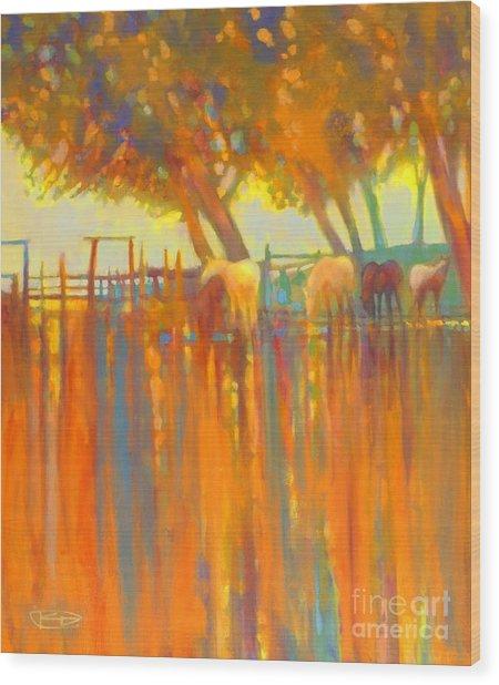 Morning Shadows Wood Print by Kip Decker
