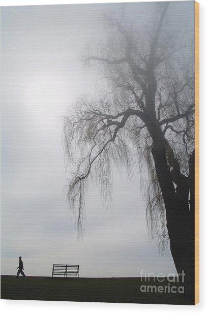 Morning Sun Tries To Break Through The Mist. Wood Print by Emilio Lovisa