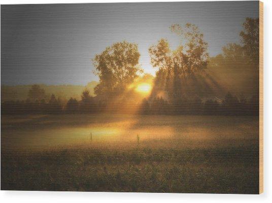 Morning Sunrise On The Cornfield Wood Print