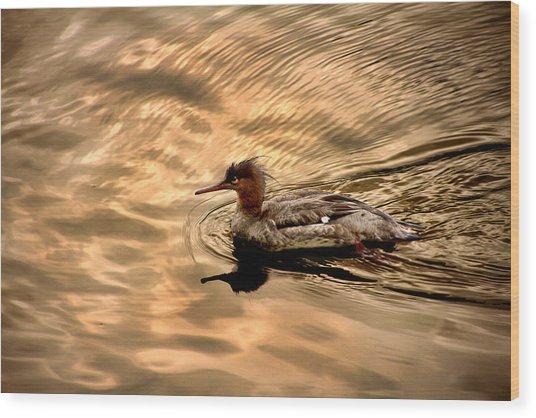 Morning Swim Wood Print
