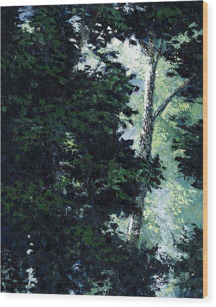 Morning Trees Wood Print by Paul Illian