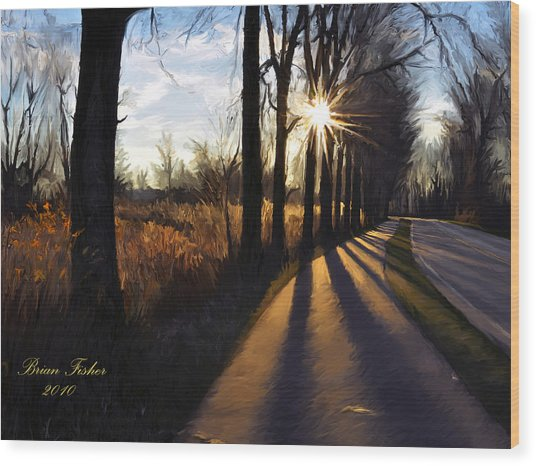 Morning Walk Wood Print by Brian Fisher