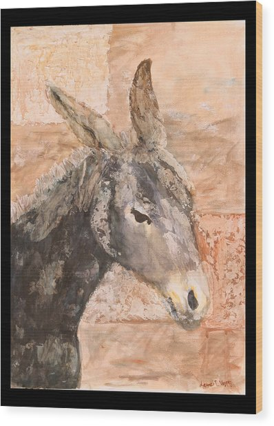 Moroccan Donkey Wood Print by Laura Vazquez