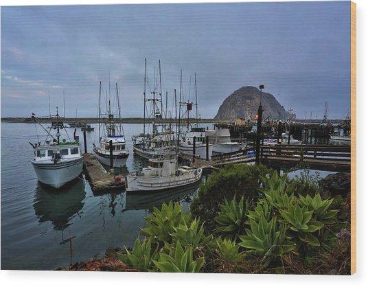 Morro Bay Wood Print