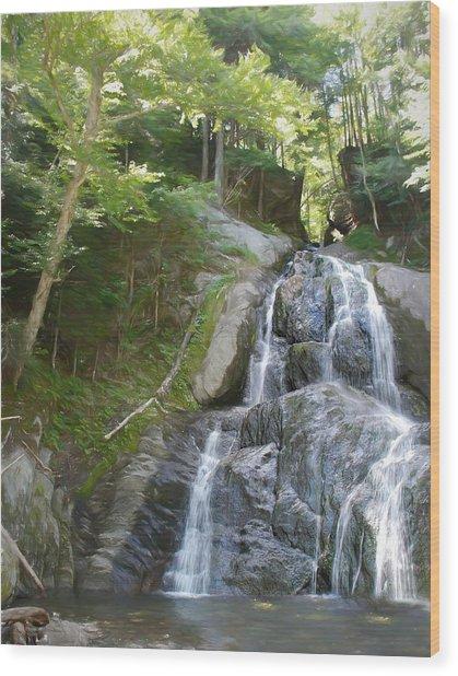 Mose Glenn Falls Granville Vt. Wood Print