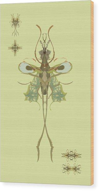 Mosquito Specimen Wood Print