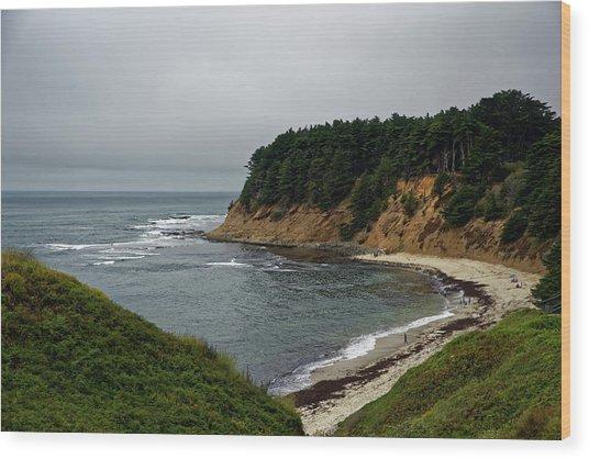 Moss Beach Wood Print