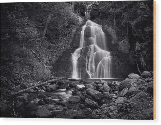 Moss Glen Falls - Monochrome Wood Print