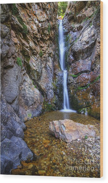 Moss Ledge Waterfall Wood Print