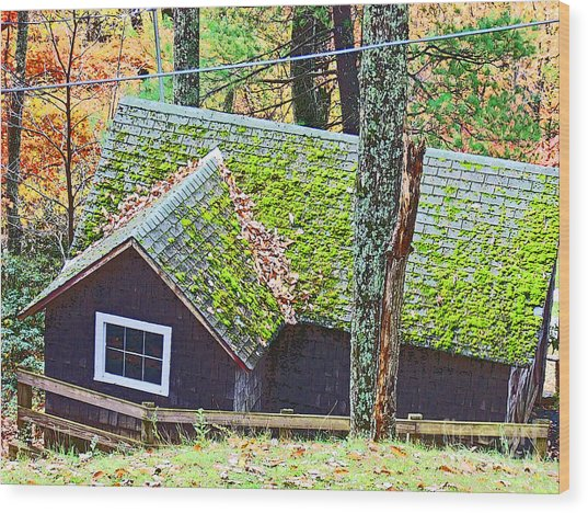 Moss Roof Wood Print by Beebe  Barksdale-Bruner