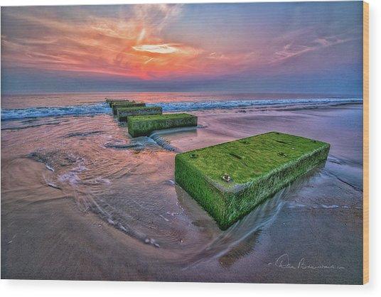 Mossy Blocks 6312 Wood Print