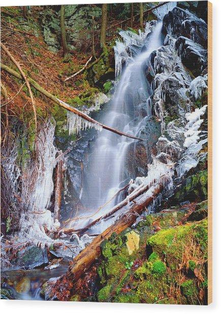 Mossy Cascade Falls Wood Print
