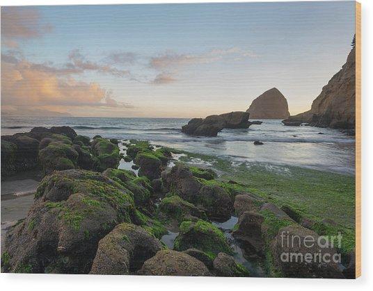 Mossy Rocks At The Beach Wood Print