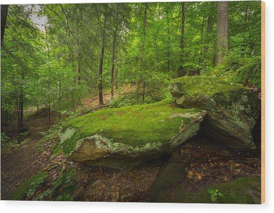 Mossy Rocks In Little Creek Park Wood Print
