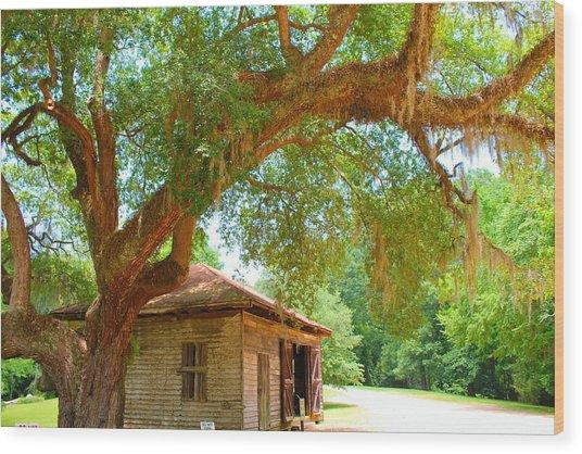 Mossy Tree In Natchez Wood Print