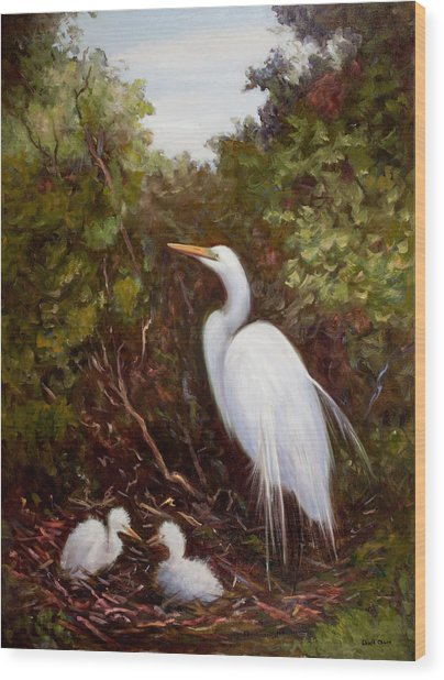 Mother Egret And Nestlings Wood Print