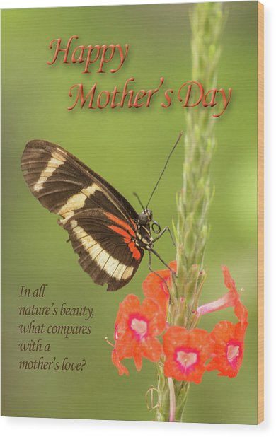 Mother's Day-butterfly Wood Print