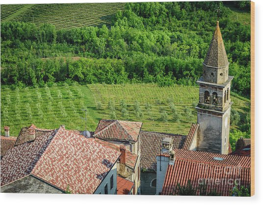 Motovun Istrian Hill Town - A View From The Ramparts, Istria, Croatia Wood Print