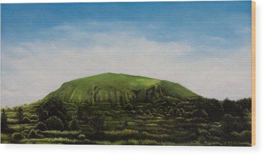 Mount Coolum Wood Print by Joe Michelli
