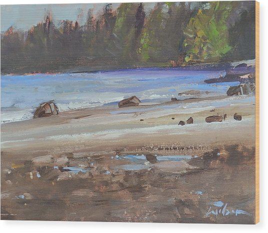 Mount Doug Beach Contre Jour Wood Print by Ron Wilson