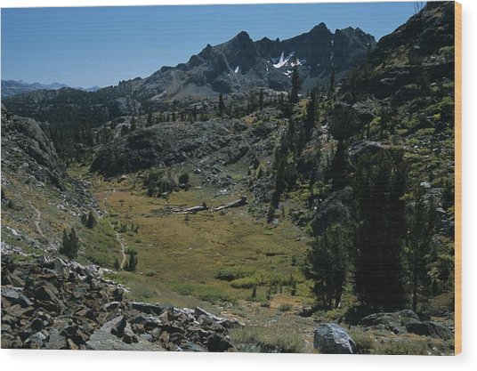 Mount Ritter And Meadow Wood Print