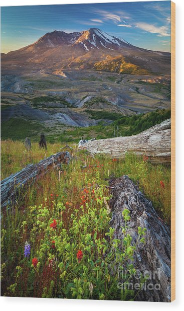 Mount Saint Helens Wood Print