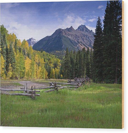 Mount Sneffels In Autumnn Wood Print