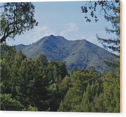 Mount Tamalpais Wood Print