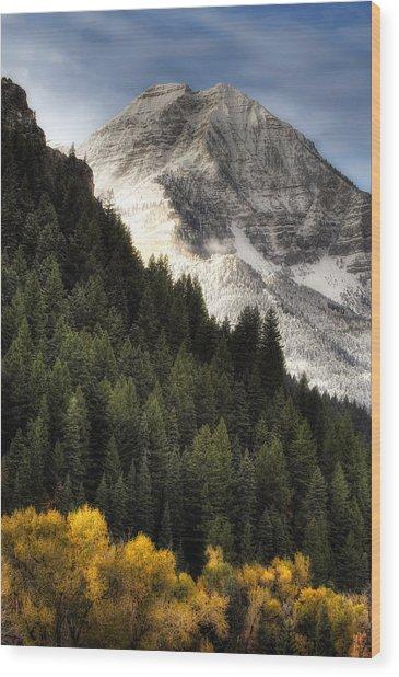 Mount Timpanogos 1 Wood Print by Douglas Pulsipher