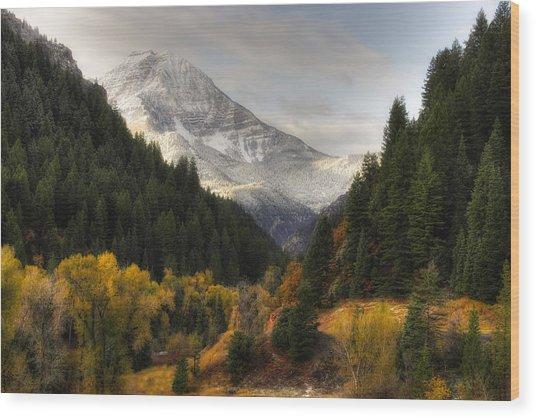 Mount Timpanogos 2 Wood Print by Douglas Pulsipher