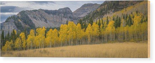 Mount Timpanogos Meadow In Fall Wood Print