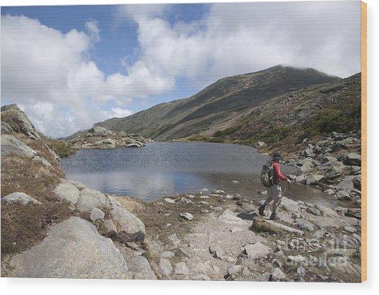 Mount Washington - New Hampshire Usa Lakes Of The Clouds Wood Print