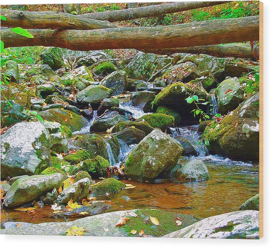 Mountain Appalachian Stream 2 Wood Print