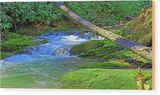 Mountain Appalachian Stream Wood Print