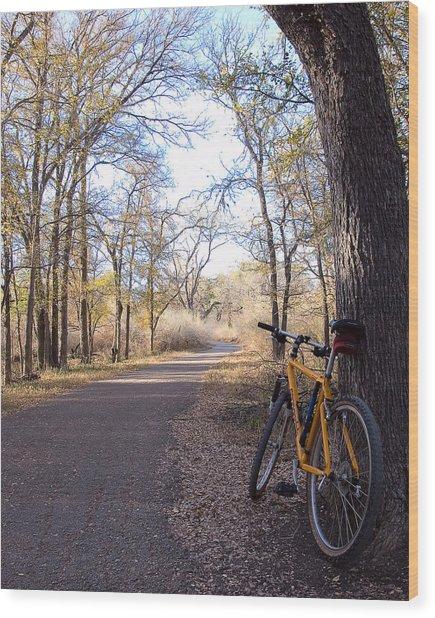 Mountain Bike Trail Wood Print