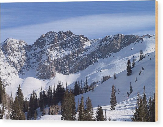 Mountain High - Salt Lake Ut Wood Print