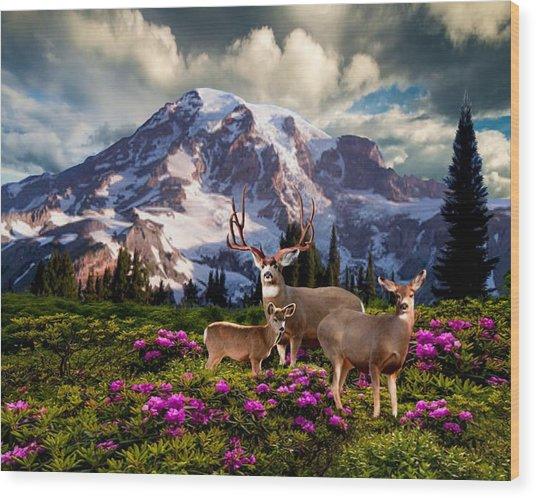 Mountain High Meadow Wood Print
