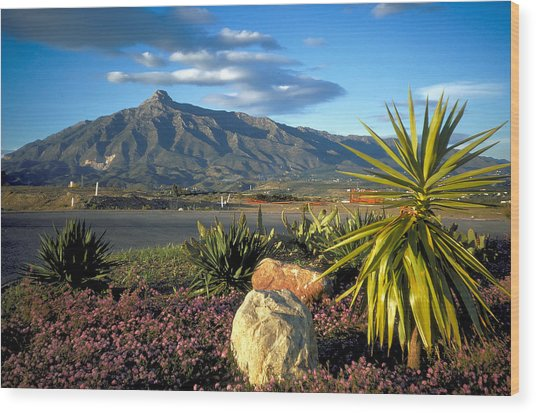 Mountain In Marbella Wood Print by Carl Purcell